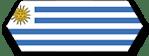 flag_uy_hzsm